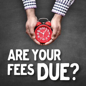 are your fees due